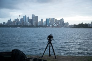 Cremorne point sunset